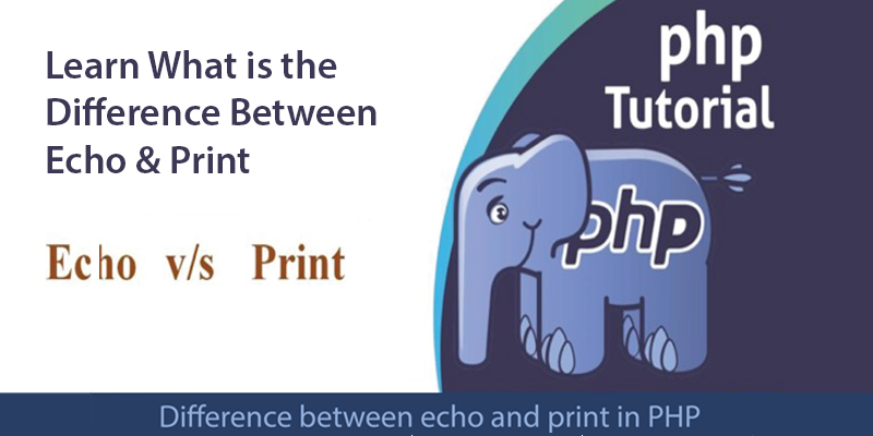 echo-vs-print