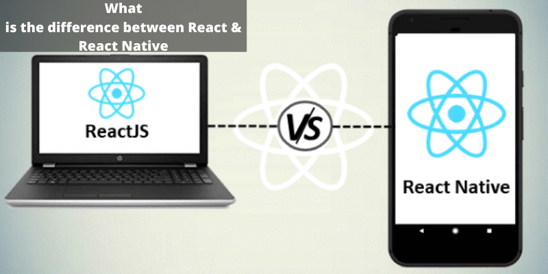 What is the difference between React & React Native